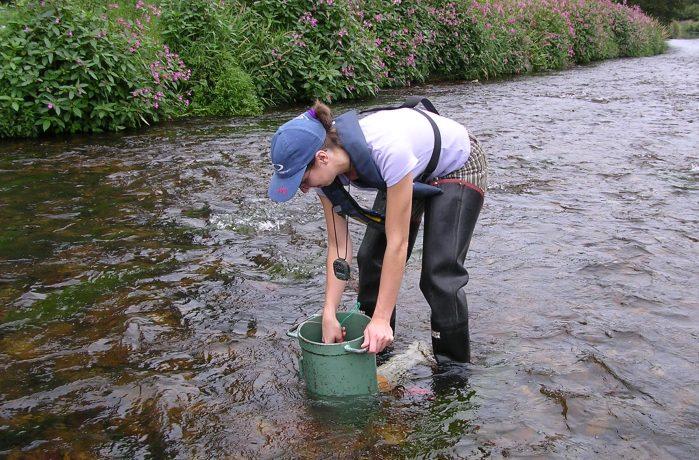 field scientist in river