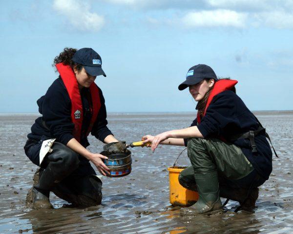 APEM scientists collecting samples on coastal survey