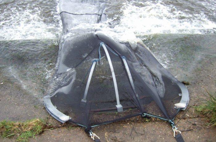 Eel screen on an ouflow