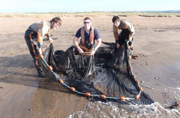 Field team netting fish on a beach