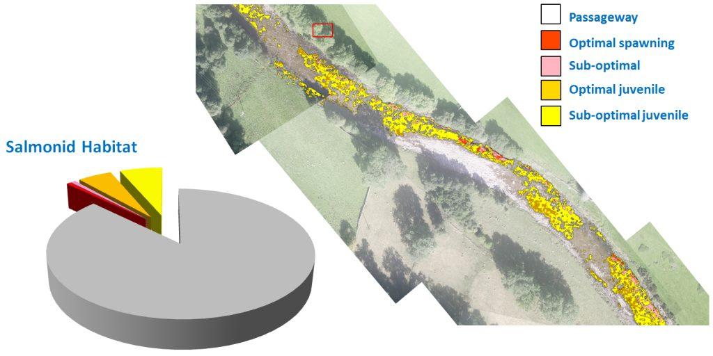 Aerial survey map showing habitat classification
