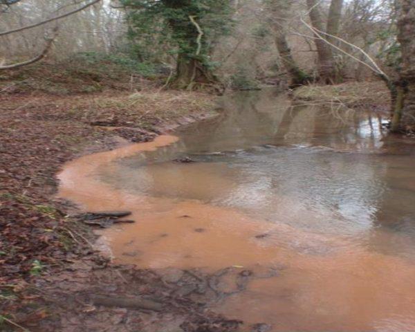 Fine sediment in stream