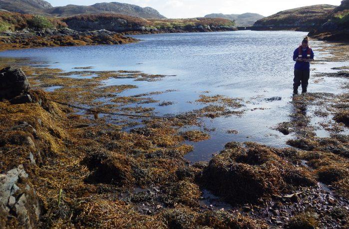 A field scientist surveying a lagoon in Scotland