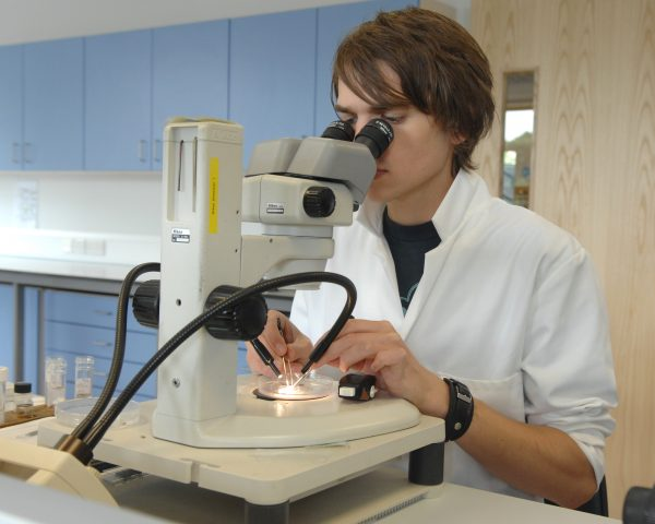 APEM aquatic scientist at microscope
