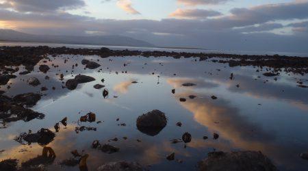 Marine surveys and sample analysis