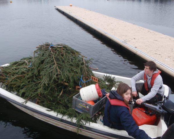 APEM scientists installing Christmas tree bundles at Salford Quays