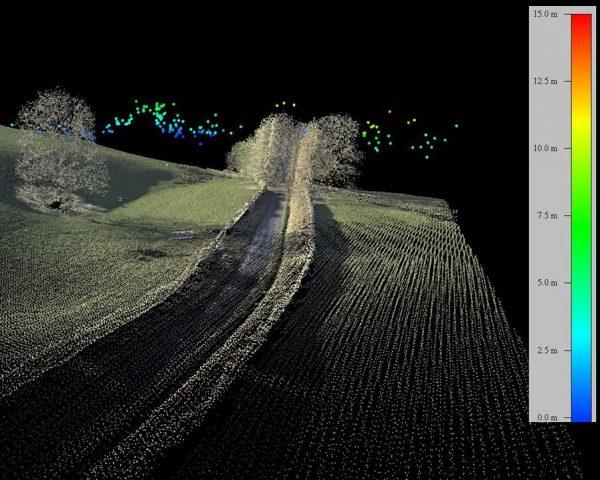 Digital LiDAR map of bird flight heights