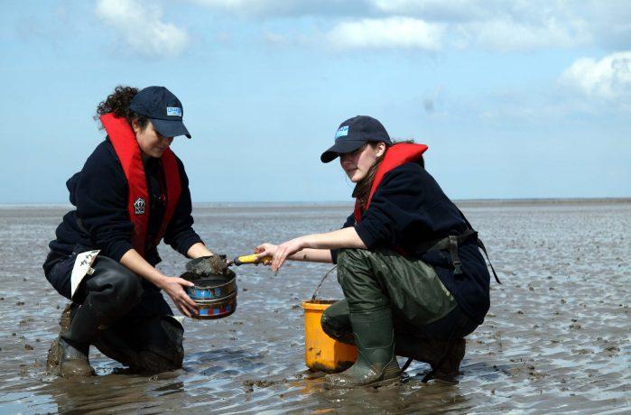 Marine Field Surveys 4
